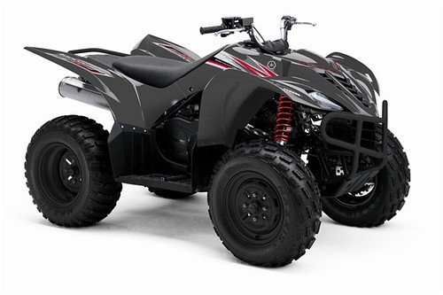 Yamaha Grizzly X Efi