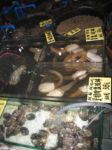 Abalone and Geoduck