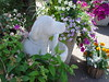 Dog Statue among the Flowers
