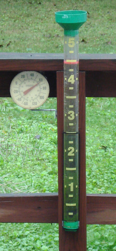 2007-09-09 DSC02115 crop