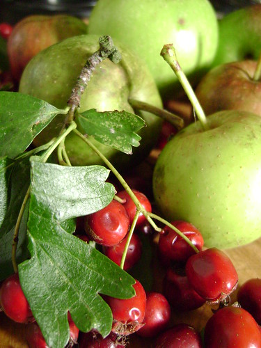 Gathered Apples and Hawthorn Berries