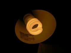 Lâmpada fluorescente. Foto: Keenan Pepper
