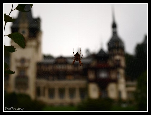 Spidery castle
