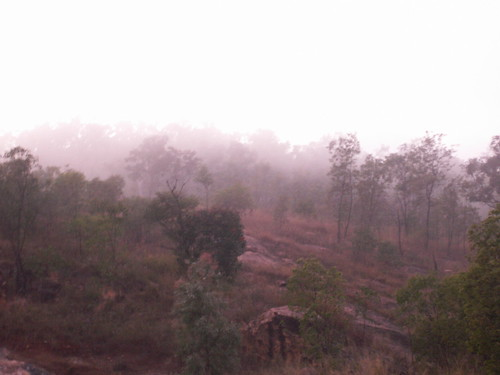 Misty morning - Townsville