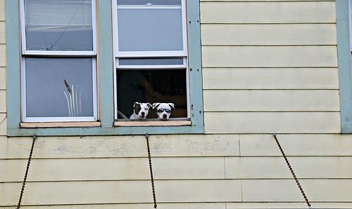 Spectators in Ketchikan