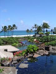 Kauai Hyatt - view from terrace