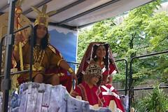 Parade der Kulturen (2007) 024.jpg