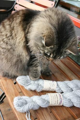 Yarn inspection