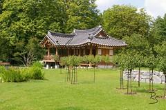 Grüneburgpark_04