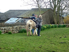 Pony rides at Docker Park Farm