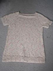 Top-Down Raglan Sweater