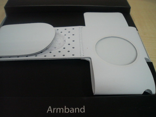 ipod nano arm band