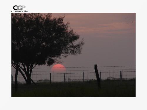 Sol naciente by Cgalarza.