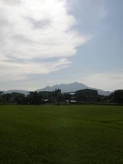 21.關渡平原的稻田與觀音山 (2)
