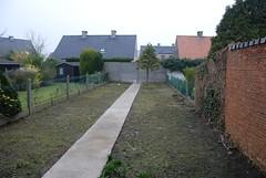 Onze tuin in maart