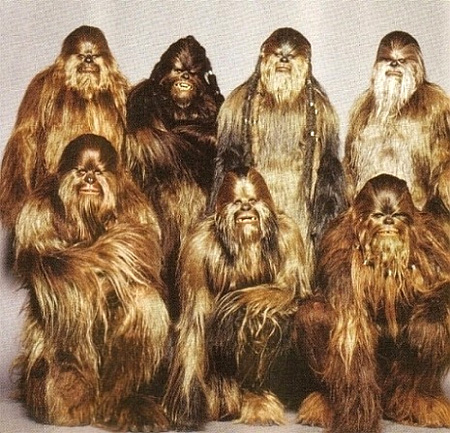meet the chewbaccas