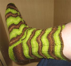 Chomp Sock on leg 1