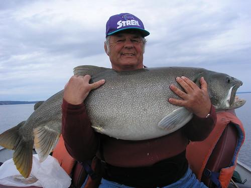 69-pound lake trout