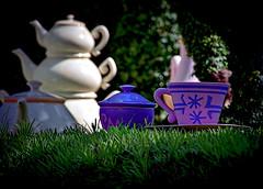 Fantasyland Teaware