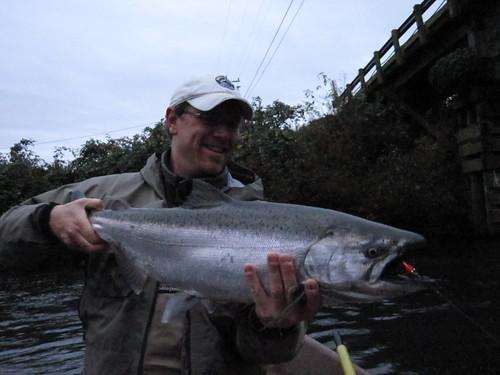 Fishing for chum salmon