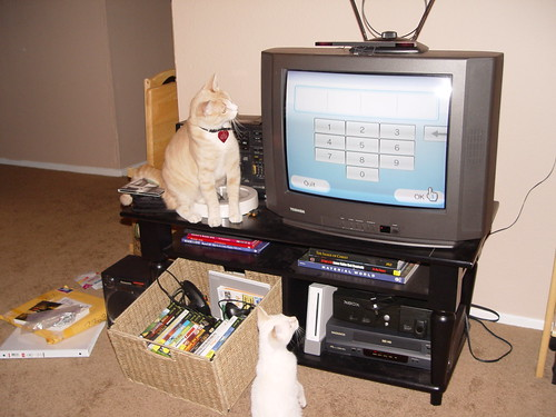Nutmeg and Wii