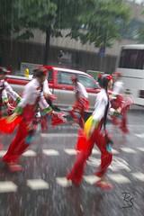Parade der Kulturen (2007) 007.jpg