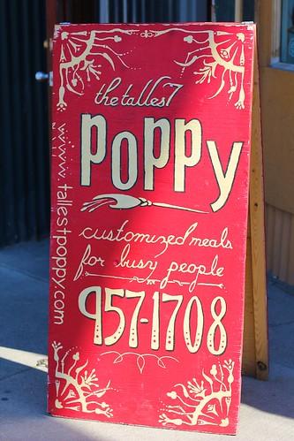 The Tallest Poppy