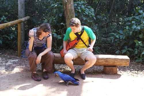 Brenda en ik observerende in een inmens grote kooi vol verschillende soorten Ara's. Is in vogelpark  Brazilie