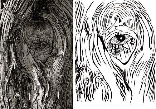 Stories In The Trees & Seeing Truth 2