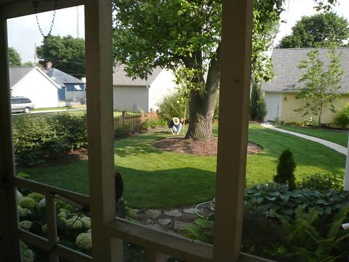 John in back yard