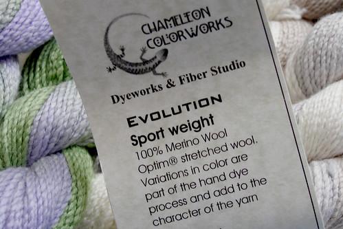 070610.chameleon
