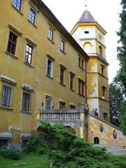 Radim (okres Kolín), zámek