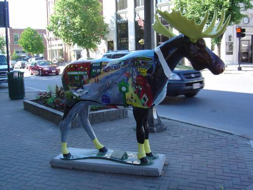 Main Street moose