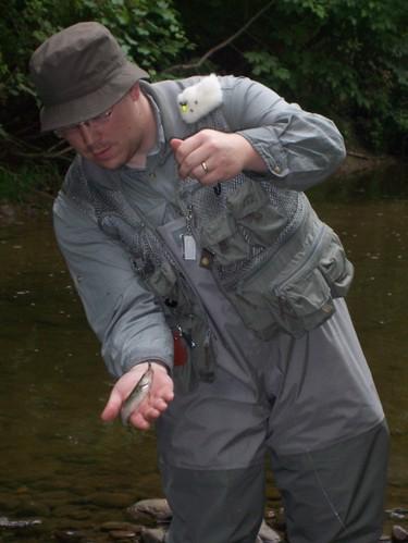 A Creek Chub