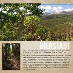 Bierstadt Lake Trail Left