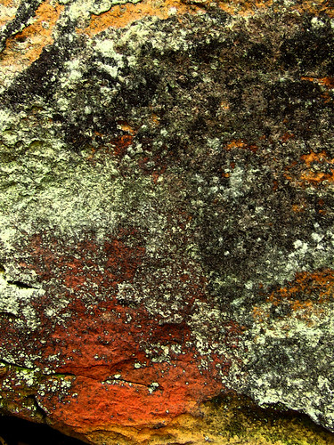 iron oxides and lichen