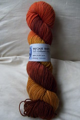 STR autumn skein