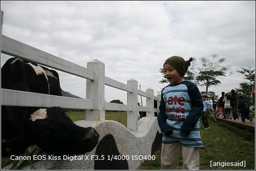 b-20090103_101545.jpg