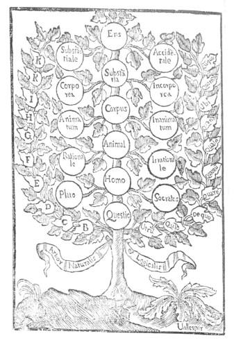 Arbor Logica