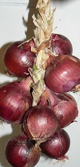 red burgermaster onions