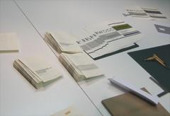 cotillons per il secondo compleanno di FNl, di FNs e di FNa, Milano, 15.10.2010; Professione Libro, 11