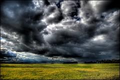 Alberta Tornado Watch
