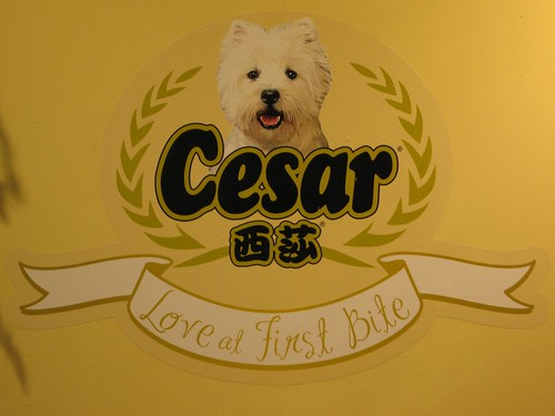 Cesar event