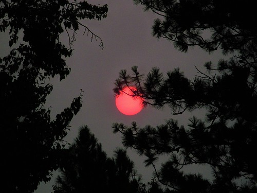Smoky morning sun