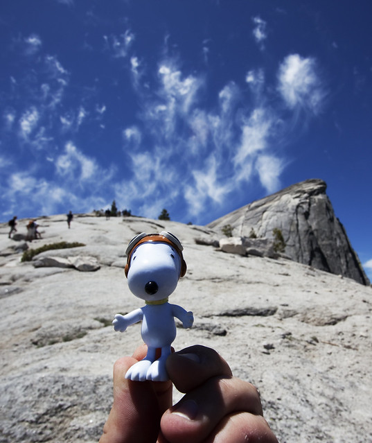 Snoopy Almost at the Top!