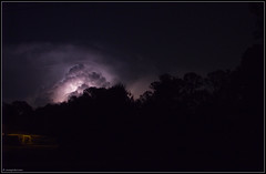Night Lightning #1