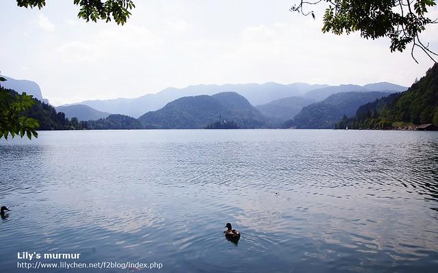 Bled湖真的很美麗,有機會到Slovenia一定要來參觀!