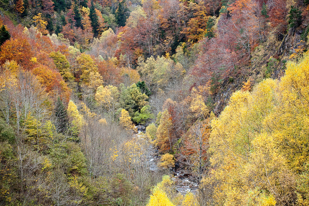 Colors - Vall d'Aran