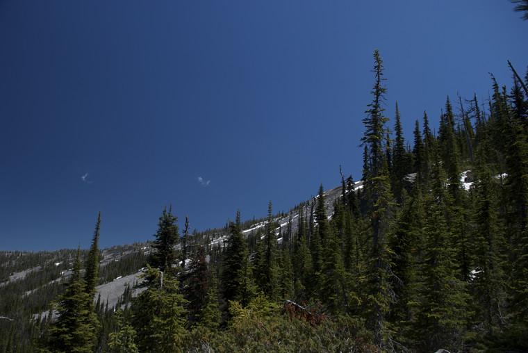 Baldy Mountain trail