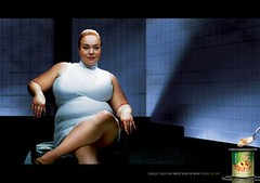 Fit Light Dairy: Sharon Stone
